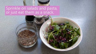 How to toast hemp seeds