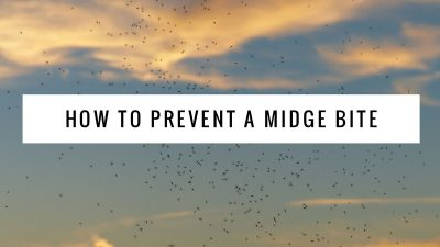 How to protect yourself against the midges in Scotland