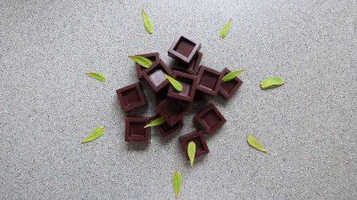 Easy raw mint chocolate recipe