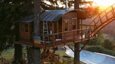 Treehouse with skatebowl