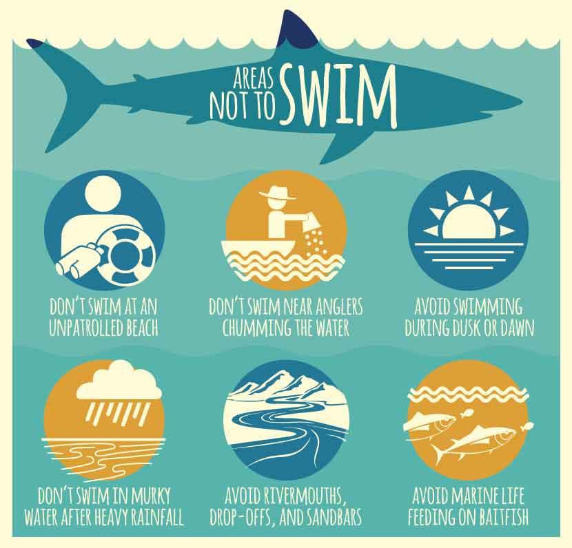 areas-not-to-swim
