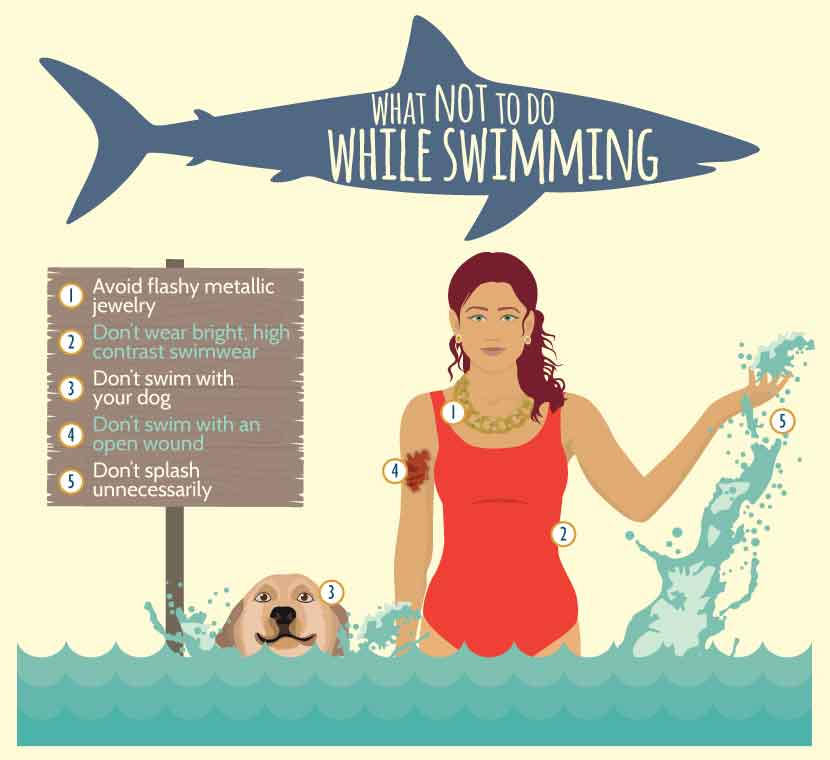 what-not-to-do-while-swimming