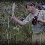 Adventure filmmaking guide: How To Machete