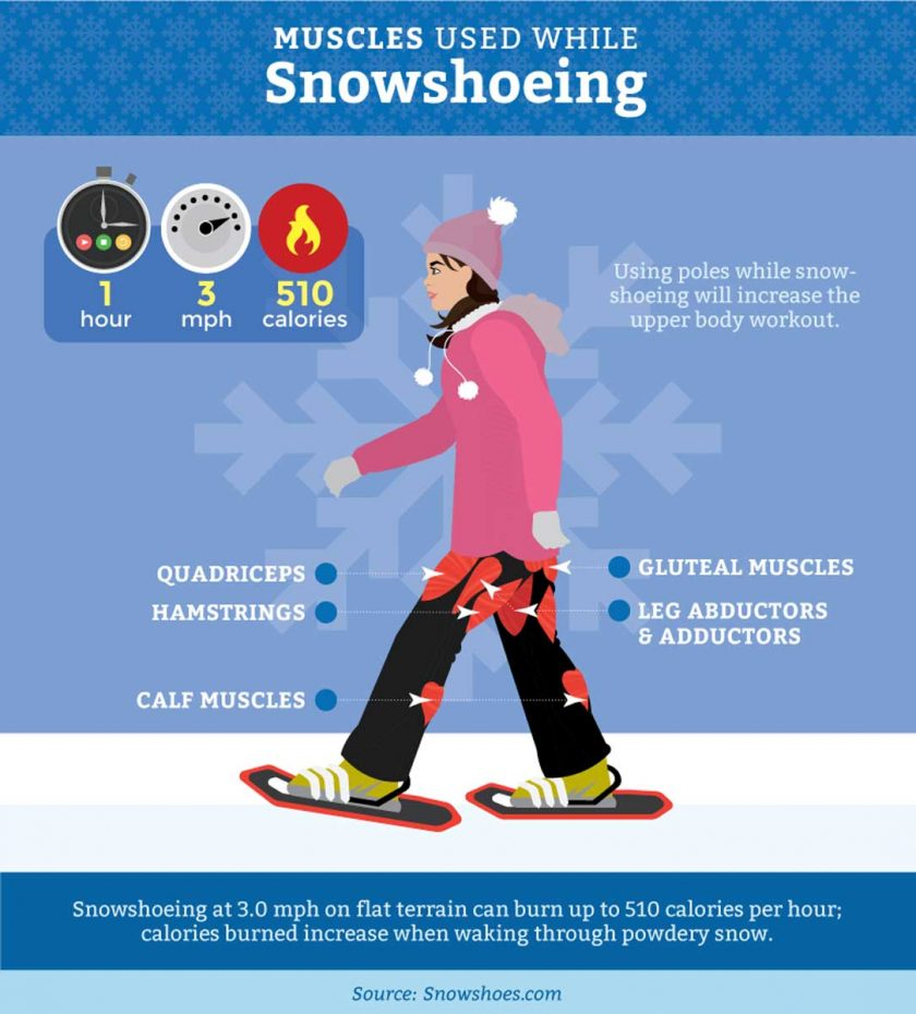 Snowshoeing Or Cross Country Skiing Which To Try