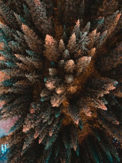 Gallery: The SkyPixel Drone Photo Contest showcases the best Aerial Photography