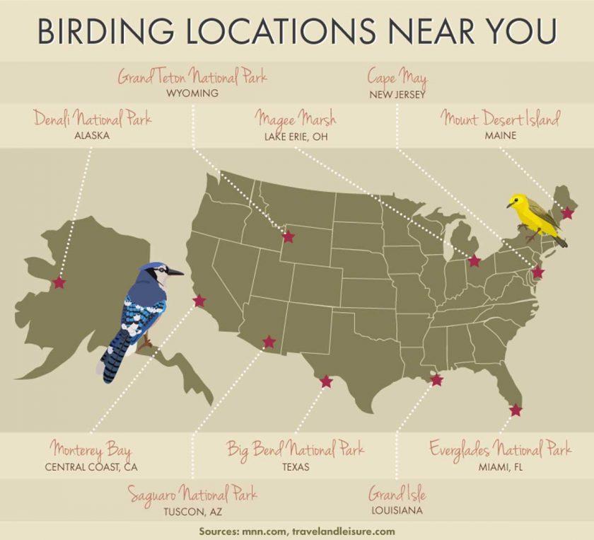 birding-locations-near-you