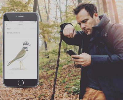 Song Sleuth iOS app is Shazam for bird songs – identify any bird by listening to it