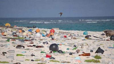 DELL to turn ocean plastics from Haiti beaches into laptop packaging