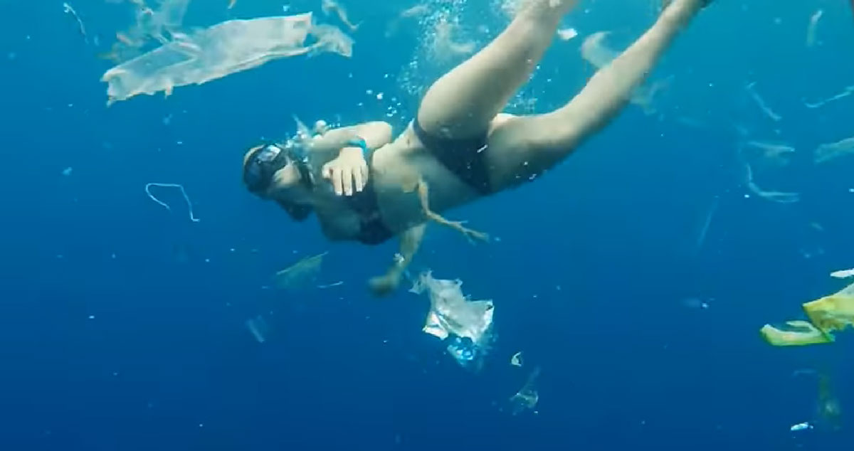 Video Of Free Diver In Bali Captures Horrifying Expanse Of