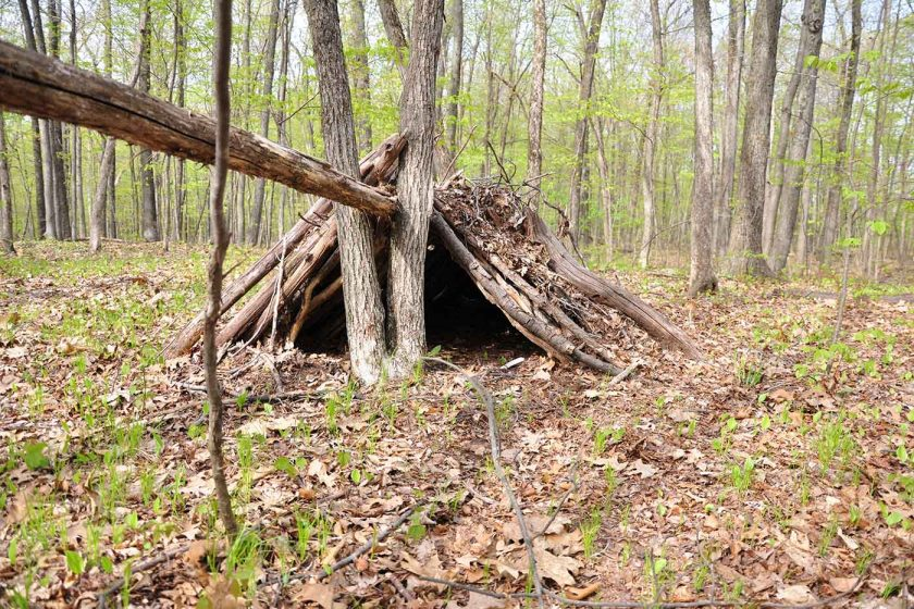 A-frame survival shelter made of sticks in a forest