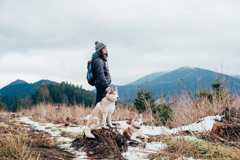 Female hiker with two huskies